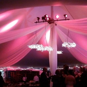 DesignLight twig chandelier and overhead voile fabric