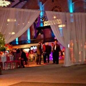 DesignLight the Castle fabric and lighting for mitzvah